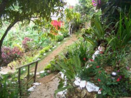 The Gardens at Ahhh...Ras Natango