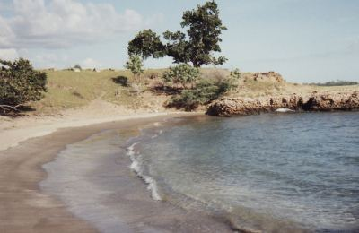 A small secluded beach in the Great Pedro Bay area of Treasure Beach