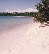 Favourite Jamaican Beaches