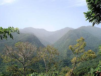 Panoramic view of the Grand Ridge of the Blue Mountains
