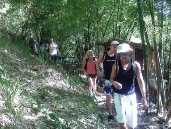 Hikers exiting the Bamboo Grove Camp Site