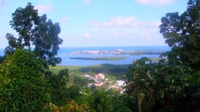 The View from Cedar Ridge Lodge