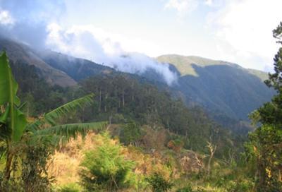 Spectacular Blue Mountain setting